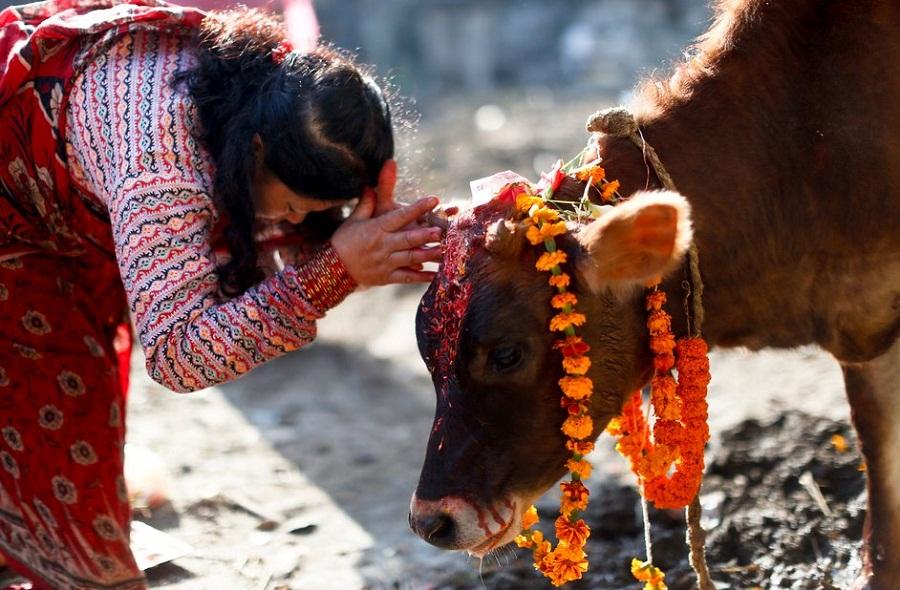 देबकोटा जन्मजयन्तीः नेपाली भाषालाई विश्वसामू यसरी चिनाएका थिए