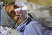 अस्पतालको बिकृति हटाउन डा केसीको ११ दिने अल्टिमेटम्, बिकृति नहटाइए सरकार विरुद्ध अनशन बस्ने चेतावनी