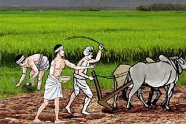विदेशबाट फर्केकालाई नगरपालिकाको कृषि रोजगारी