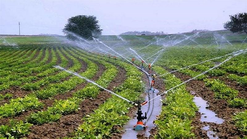 कैलाली, कञ्चनपुर, डडेल्धुरा, बैतडी र डोटी मुख्यमन्त्री कृषि कार्यक्रम