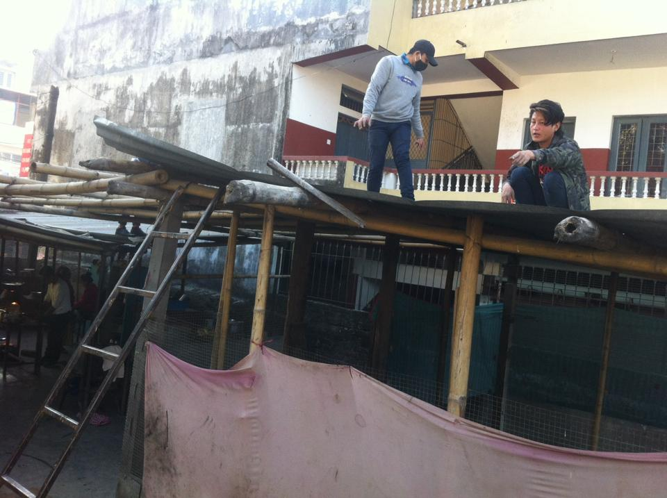 पूर्ब मिस मेरिनाले पुनःस्थापना गृह निर्माणमा यसरी गरिन् सहयोग