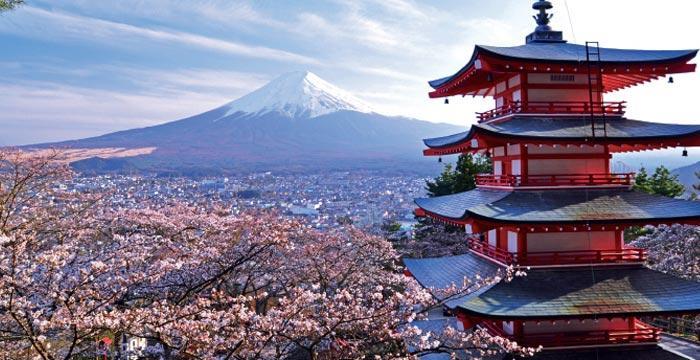जापानबाट आयो यस्तो खबर, दुइको मृत्यु