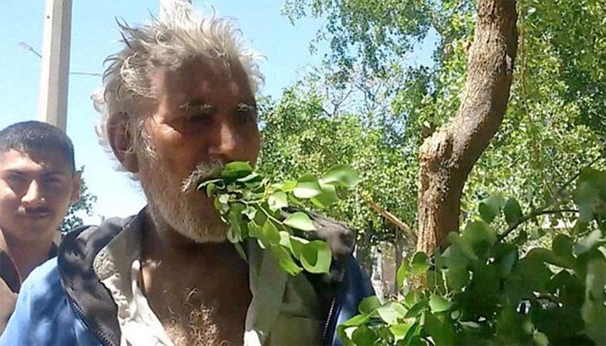 खसी–बाख्राले झैं स्याउला खाने व्यक्ती, २५ वर्षदेखि स्याउला खादैँछन् !