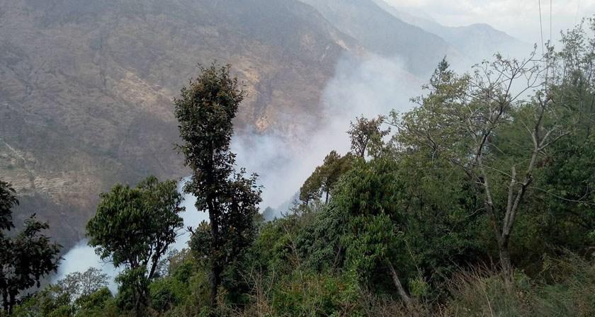 घाँसका लागि उपभोक्ता नै लगाउँछन् सामुदायिक वनमा आगो
