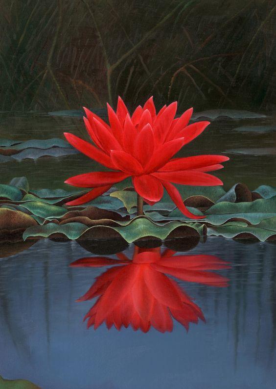 रातो कमलको फूल हेर्न चिनियाँ पर्यटक
