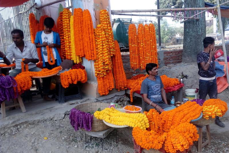 जनकपुरधाममा ५० लाख रुपैयाँको फूल आयात