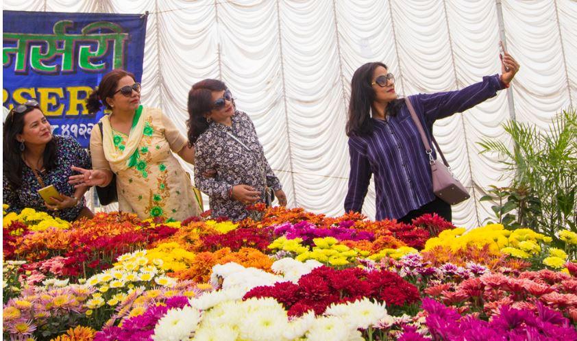 जावलाखेलमा गोदावरी फूलको प्रदर्शनी शुरु (फोटो फिचर)