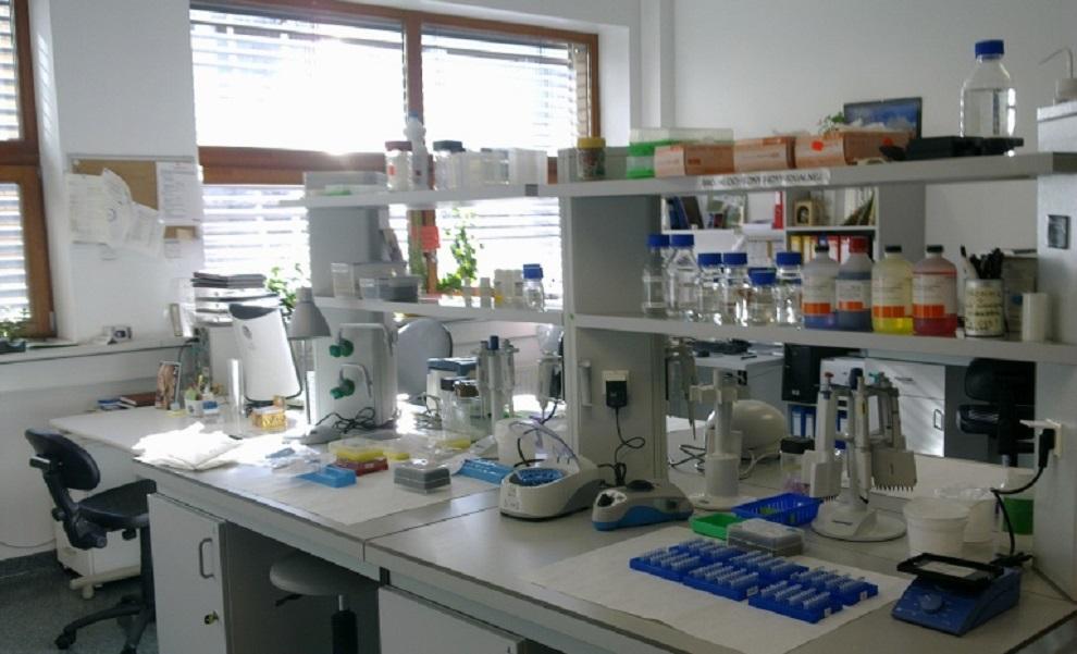 खाद्यान्नमा हुने विषादी न्यूनीकरण गर्दै, विषादी प्रयोगशाला स्थापना