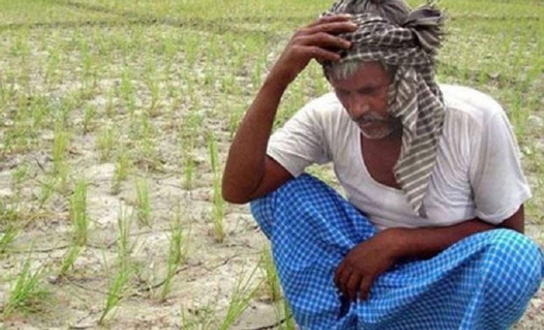 खेती लगाउने समयमा नै युरिया मलको चर्को अभाव