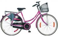 मुख्यमन्त्री राउतद्वारा छात्रालाई साइकल वितरण