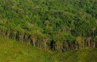सामुदायिक वन समावेशी संरचनाको नमूना