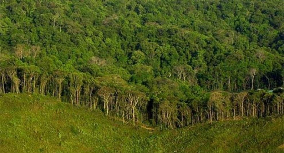 भानुभक्त प्राणी उद्यानद्धारा १३ वन क्षेत्र समावेश
