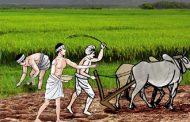 कृषिलाई व्यावसायीकरण र आधुनिकीकरण गर्न ब्याज अनुदान