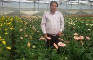 फुल व्यवसायी पन्तले दिए ५० जनालाई रोजगार, भन्छन्, 'विदेशी अनुदानले कृषि विगार्यो'