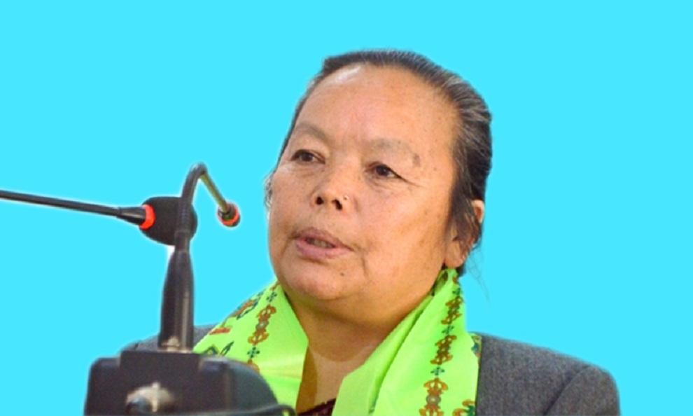 प्रवासीलाई लगानी भित्र्याउन महिला बालबालिका तथा ज्येष्ठ नागरिकमन्त्री थापाको अग्रह