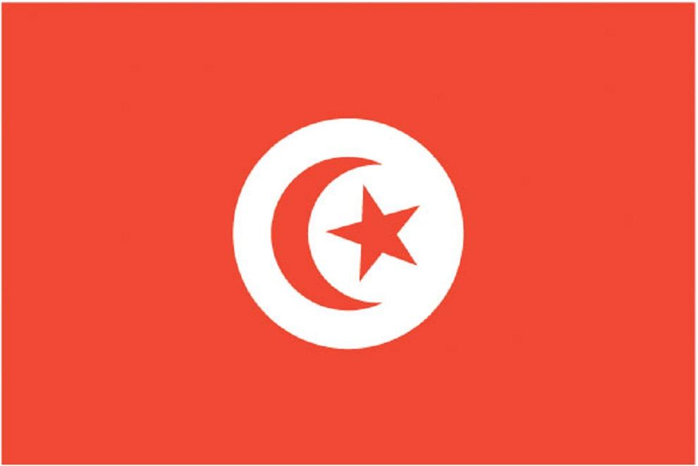 ट्युनिसियामा मृत्यु हुने पर्यटकको सङ्ख्या २६ पुग्यो, १७ घाइते