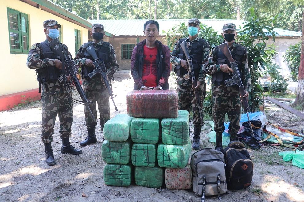 नेपाली सेनाद्वारा १०३.९२ केजी गाँजा तस्कर पक्राउ